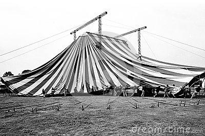 circo-medrano-cirque-medrano-35939913